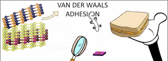 Van Der Walls